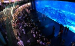Аквариум в Дубае (Aquarium of the Dubai mall)